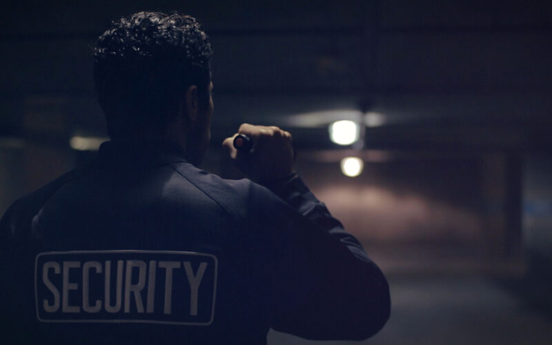 security-dgs